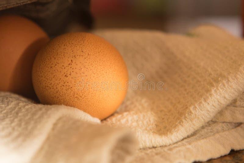 O ovo branco em uma toalha no amanhecer iluminou-se pelo sol fotografia de stock royalty free