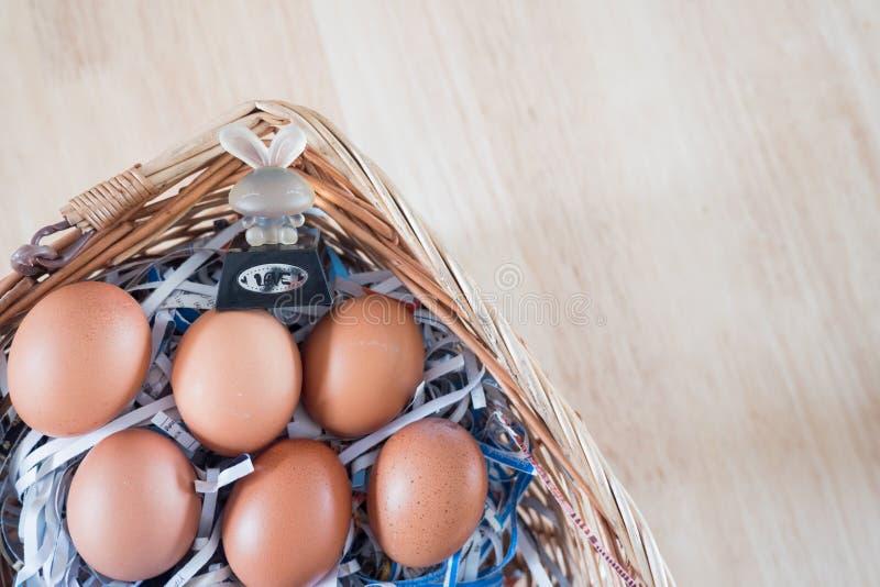 O ovo e o coelho da galinha na cesta Tempo da Páscoa, tempo feliz Elevação de Jesus outra vez imagem de stock royalty free