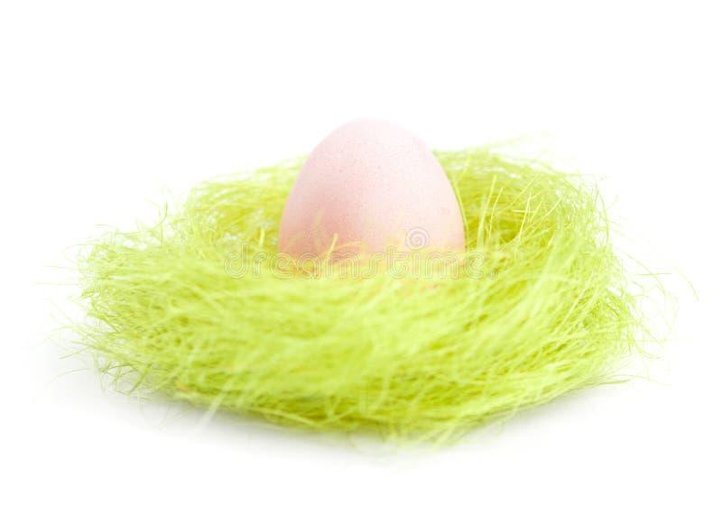 O ovo está no ninho da fibra verde do sisal fotos de stock royalty free