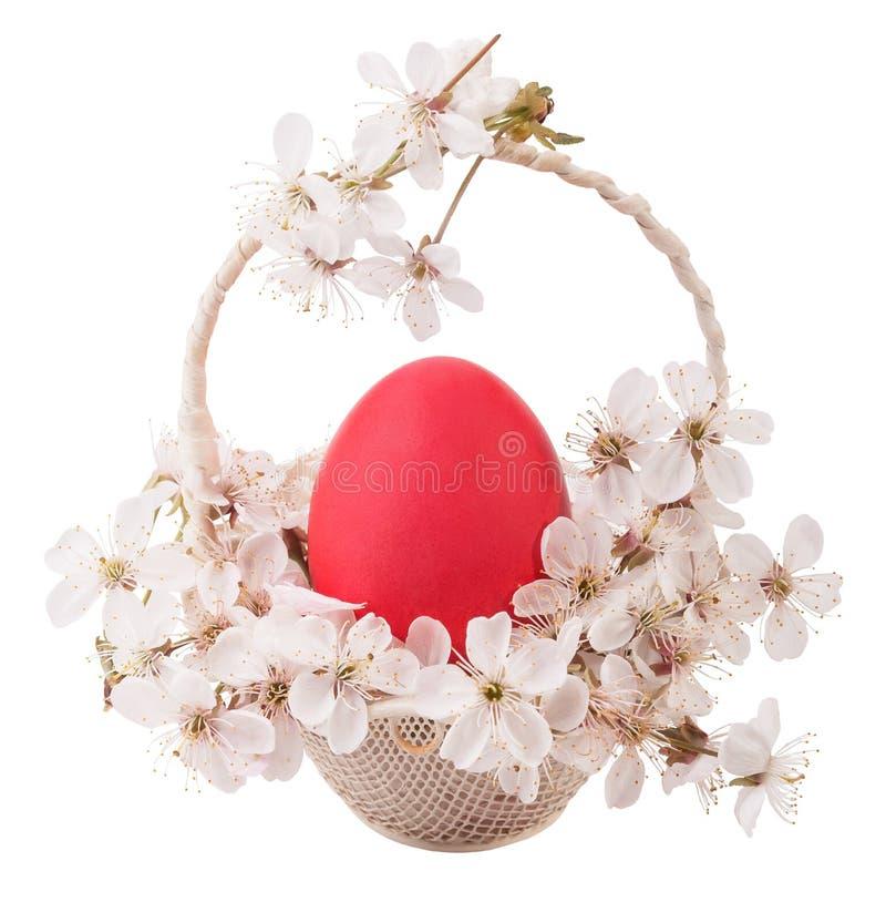 O ovo vermelho na cesta em um branco isolou o fundo imagens de stock