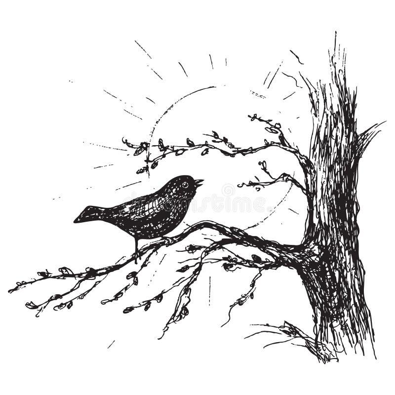 O pássaro do esboço canta na árvore ilustração stock