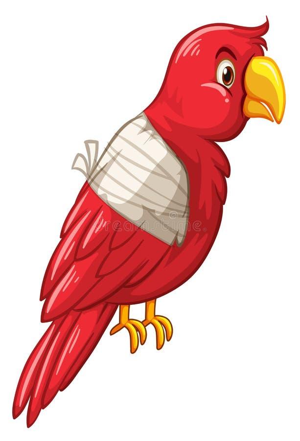 O pássaro do papagaio é ferido ilustração royalty free