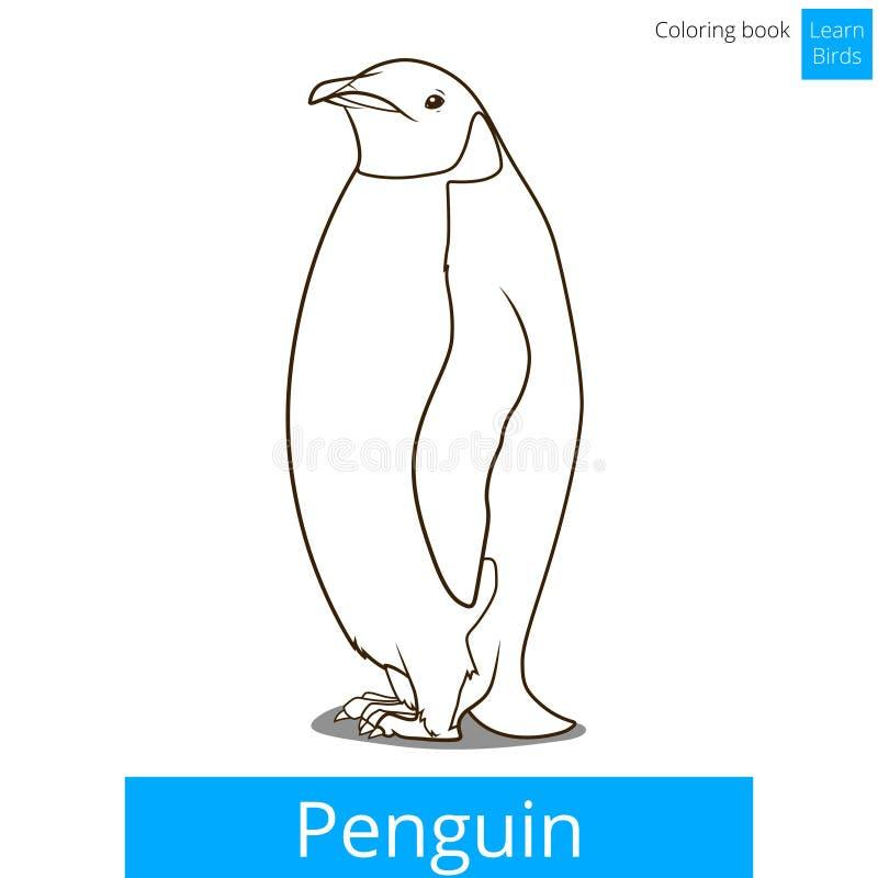 O pássaro do pinguim aprende o vetor do livro para colorir dos pássaros ilustração do vetor