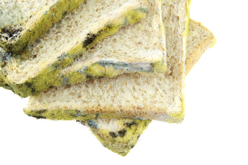 O pão expirou quatro partes fotos de stock royalty free