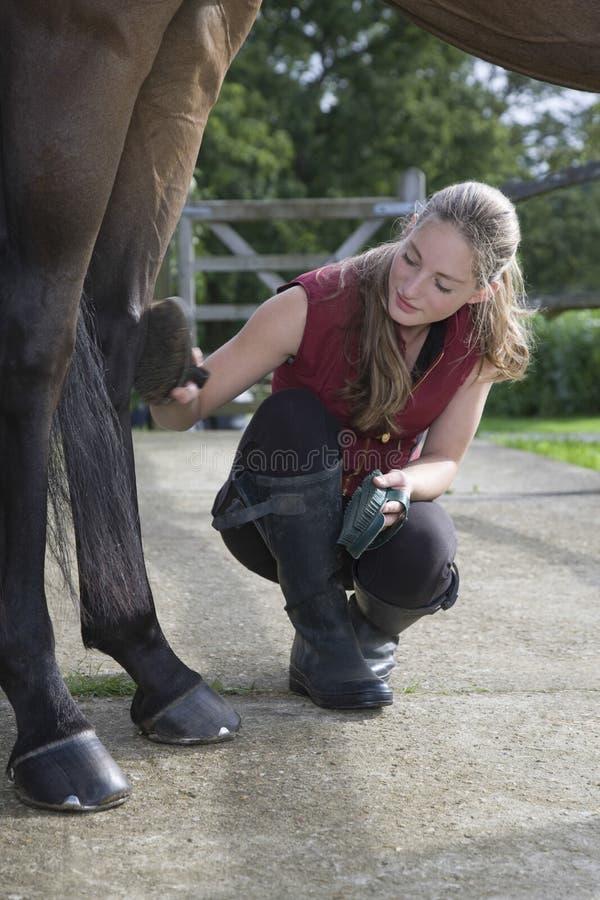 O pé do cavalo da preparação da menina fotografia de stock royalty free