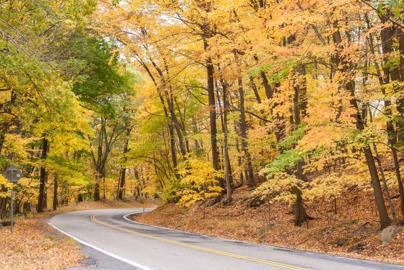 O país montou no outono fotografia de stock