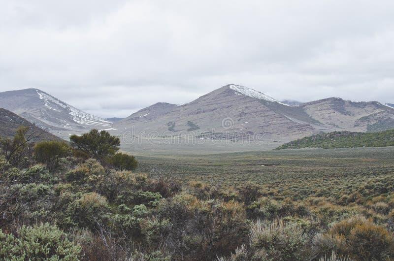 O país traseiro do deserto frio fresco imagens de stock royalty free