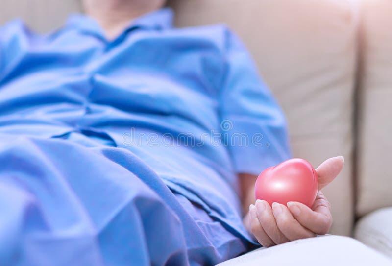 O paciente da mulher adulta que guarda a bola de borracha vermelha para o exercício muscles o imagens de stock