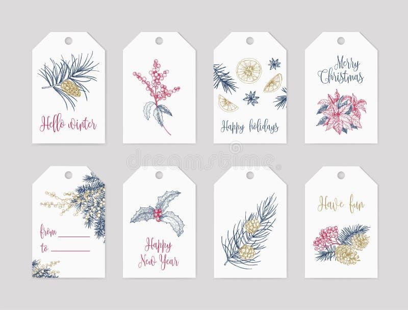 O pacote de moldes da etiqueta ou da etiqueta do feriado de inverno decorados com plantas sazonais entrega tirado com linhas de c ilustração royalty free
