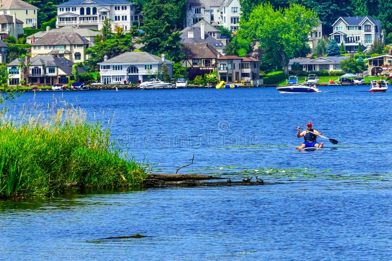 O Paddler abriga o lago Washington Juanita Bay Park Kirkland Washington fotografia de stock royalty free