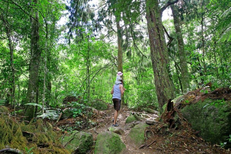 O pai com a filha pequena que caminha em Wairere cai a trilha, NZ fotografia de stock