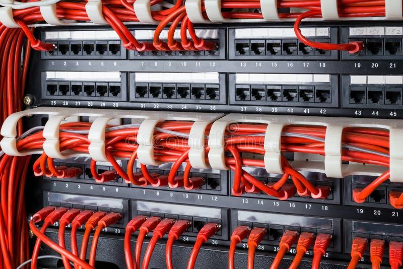 O painel da rede, o interruptor e o Internet vermelho cabografam no centro de dados Interruptor preto e cabos ethernet vermelhos, fotos de stock