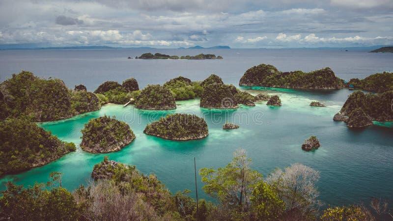 O panorama da ilha de Pianemo coberto de vegetação com as plantas da selva, cercado pela turquesa rasa coloriu a lagoa do oceano  fotografia de stock royalty free