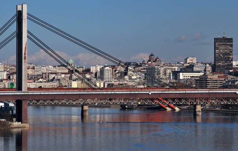 O panorama de Belgrado fotos de stock royalty free