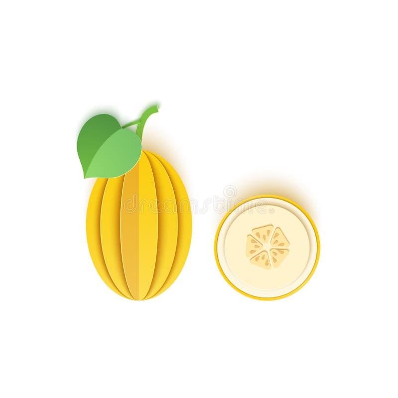 O papel é cortado com a baga do melão do todo e do corte, um projeto excelente para toda a finalidade verão, melancia doce sucule ilustração royalty free