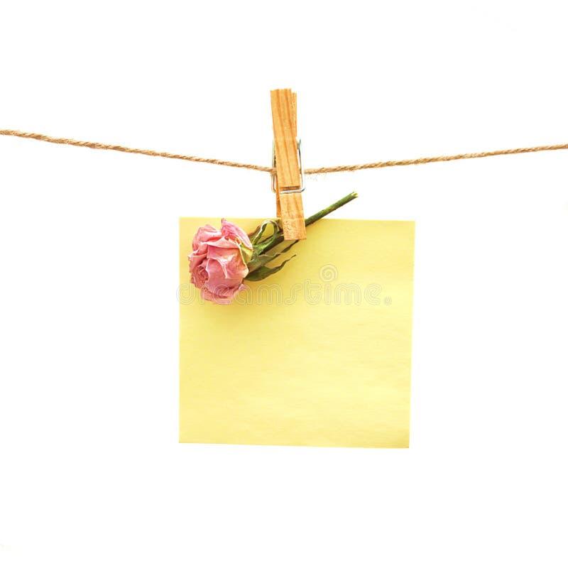 O papel e a cor-de-rosa levantaram-se com Peg de roupa. Série imagens de stock