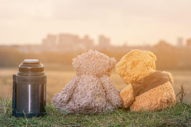 o par de ursos de peluche senta-se para trás nas folhas de outono caídas sobre um monte e em olhar a cidade na luz solar imagens de stock royalty free