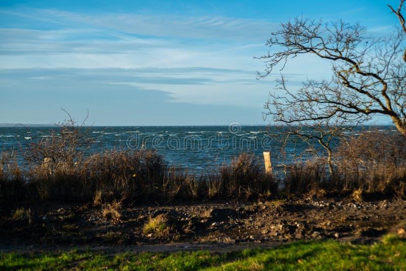 O paraíso natural Geltinger Birk em Alemanha do norte fotografia de stock royalty free