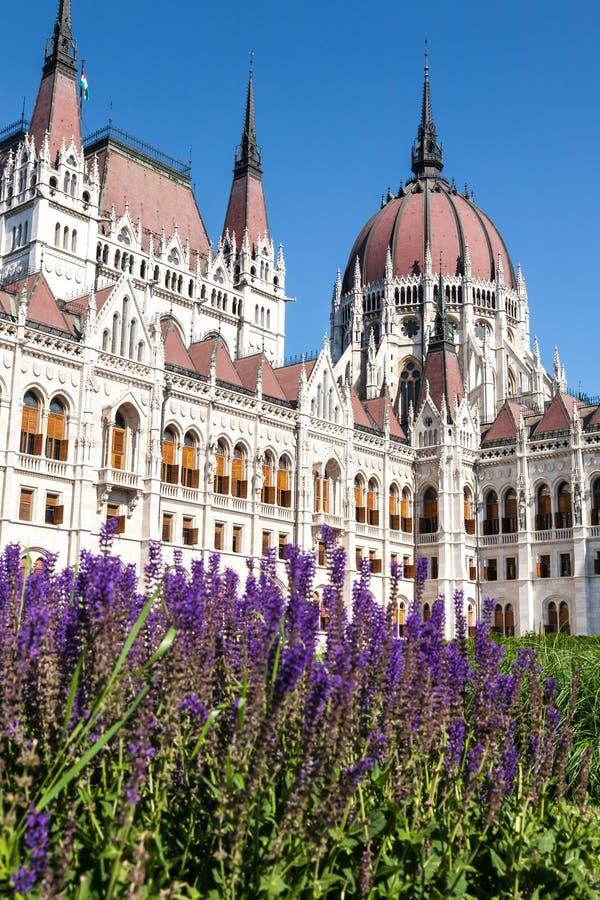 O parlamento, Budapest, Hungria foto de stock