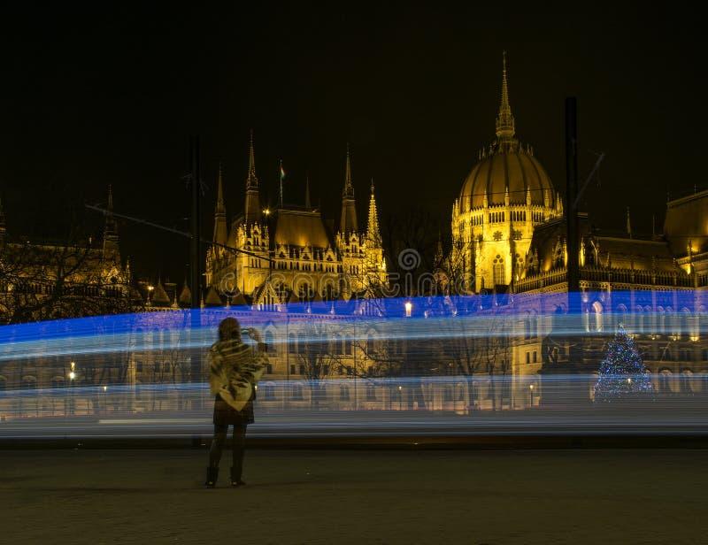 O parlamento húngaro na noite fotografia de stock
