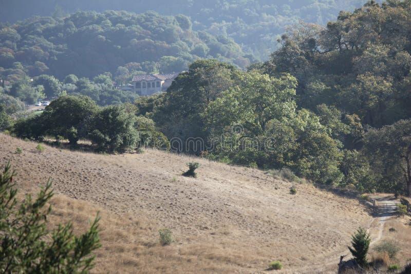 O parque de Shiloh Ranch Regional The inclui as florestas do carvalho, florestas dos evergreens misturados, cumes com opiniões ar foto de stock
