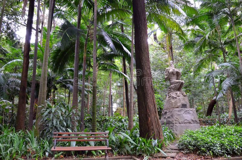 O parque de Trianon na avenida de Paulista, Sao Paulo, Brasil foto de stock