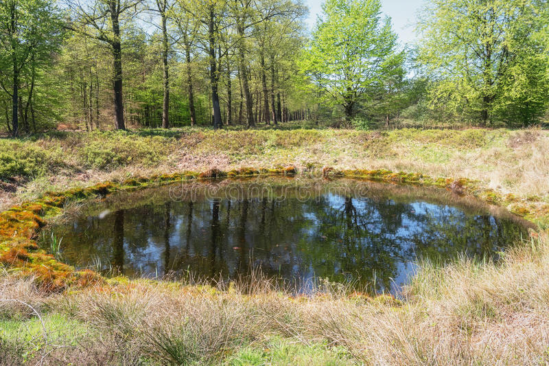O parque do gabinete situado em Apeldoorn fotografia de stock