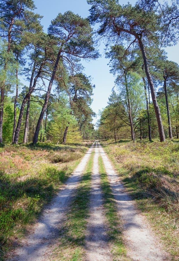 O parque do gabinete situado em Apeldoorn imagens de stock royalty free