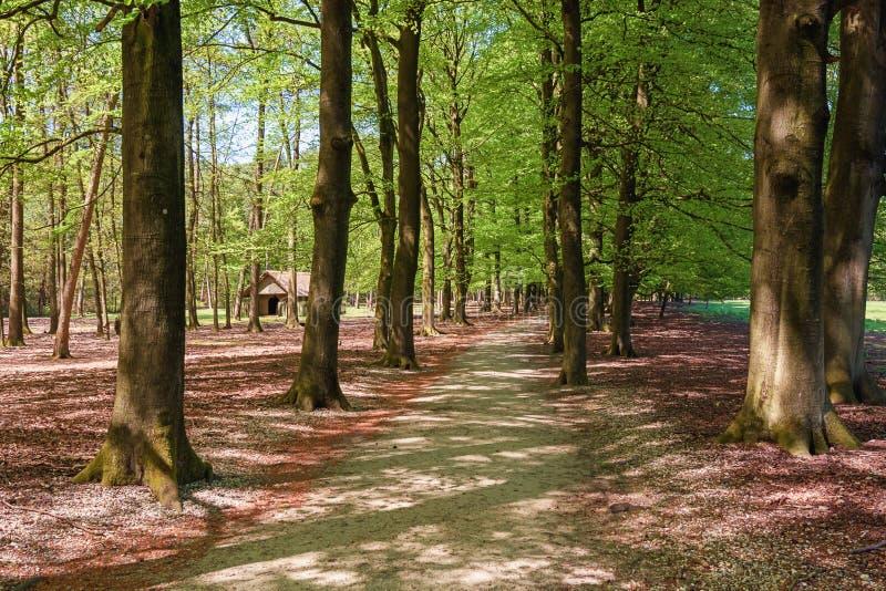 O parque do gabinete situado em Apeldoorn imagem de stock royalty free