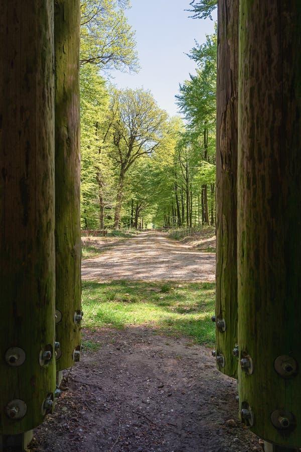 O parque do gabinete situado em Apeldoorn, visto entre os polos de madeira imagens de stock royalty free