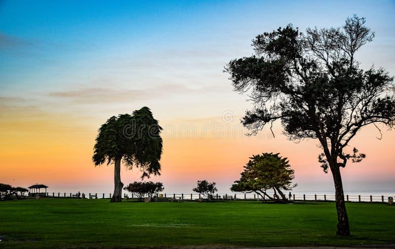 O parque gramíneo na angra de La Jolla em San Diego, Califórnia fotos de stock