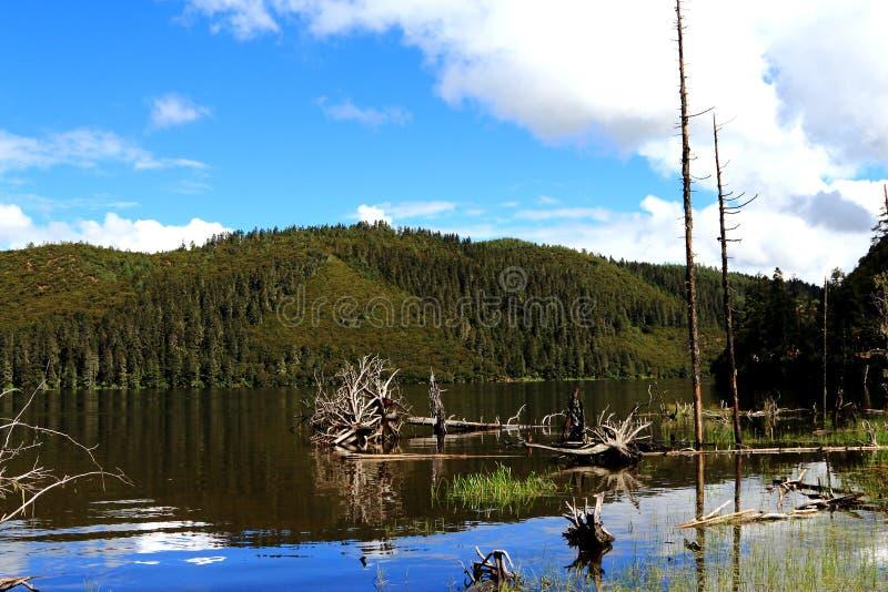 O parque nacional de China Yunnan Shangri-La Pudacuo é um lago fotografia de stock