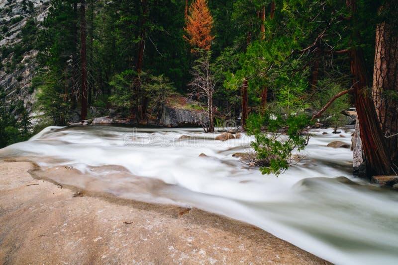 O parque nacional de Yosemite é um parque nacional do Estados Unidos imagem de stock