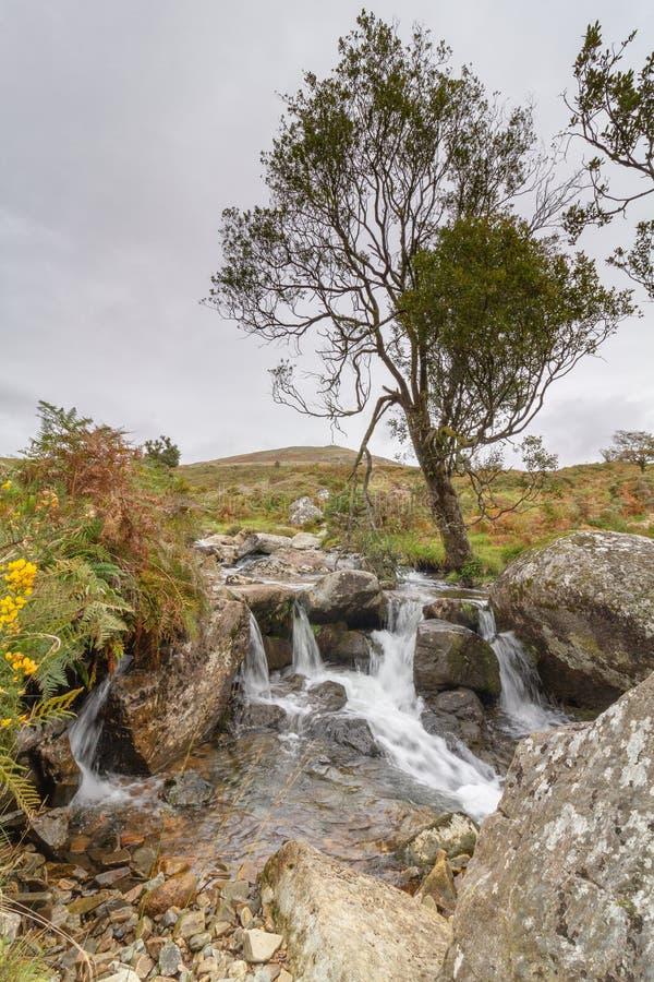 O parque nacional do LYD Dartmoor do rio fotos de stock