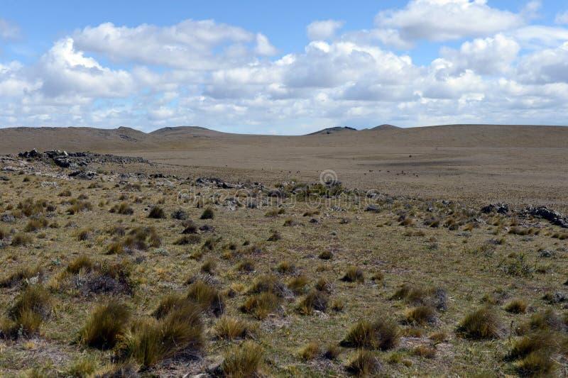 O parque nacional Pali Aike no sul do Chile fotografia de stock