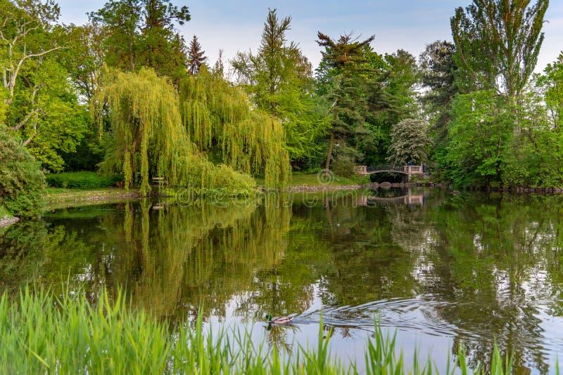 O parque Ujazdowski ? um dos parques os mais pitorescos de Vars?via, Pol?nia fotos de stock