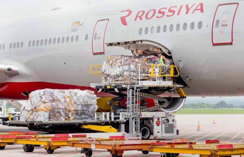 O passageiro que o avião Boeing 777-300 de linhas aéreas de Rossiya apenas aterrou, carga é descarregado dos aviões foto de stock royalty free