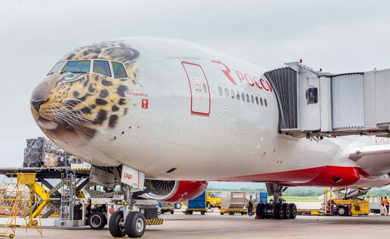 O passageiro que o avião Boeing 777-300 de linhas aéreas de Rossiya apenas aterrou, carga é descarregado dos aviões A fuselagem é imagem de stock