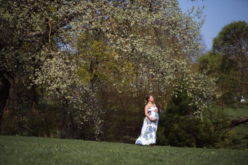 O passeio, o corredor novos da mulher gravida do viajante, girando ao redor e apreciam seu tempo livre do lazer em um parque com fotos de stock royalty free