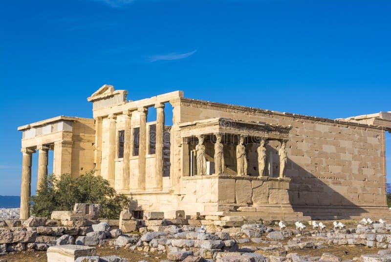 O patamar das cariátides no templo de Erechtheion na acrópole, Atenas, Grécia foto de stock royalty free