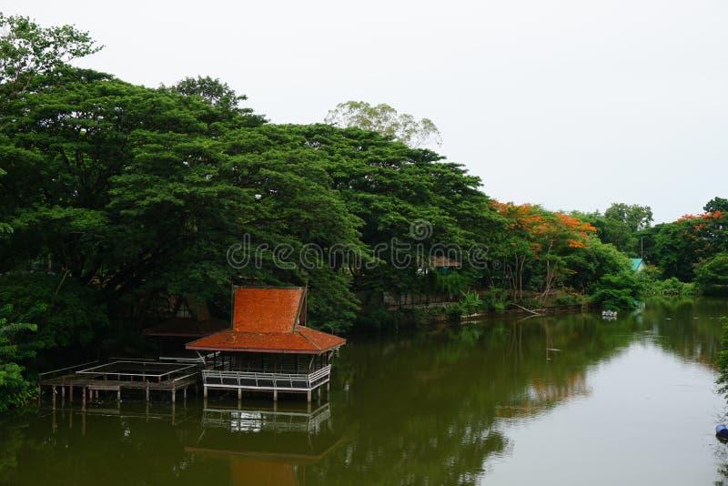 O pavilhão tailandês do lado do rio do estilo imagem de stock