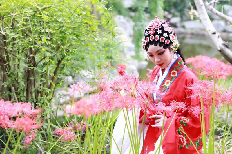 O Pequim chinês Opera de Peking da mulher de Aisa traja o manjusaka tradicional do jogo do drama do papel de China do jardim do p imagem de stock royalty free