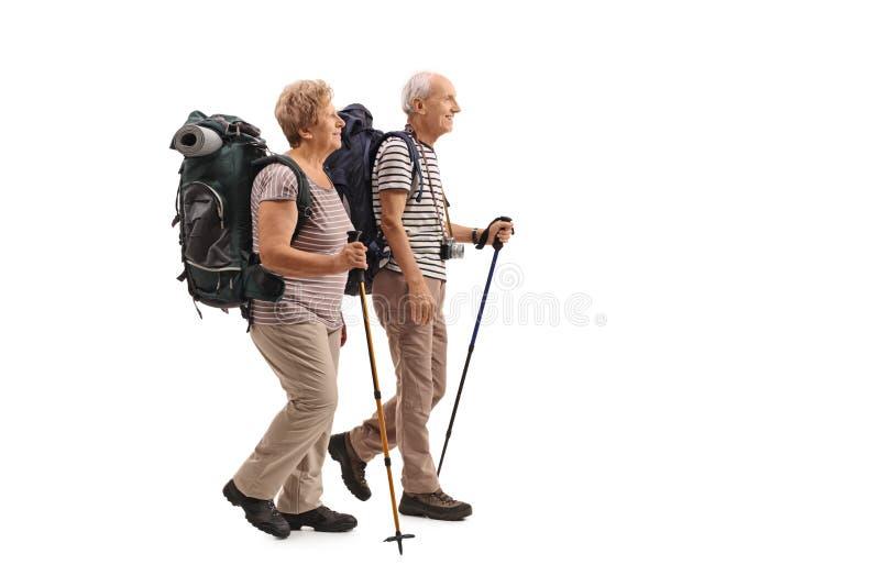 O perfil completo do comprimento disparou do passeio idoso dos caminhantes imagem de stock royalty free