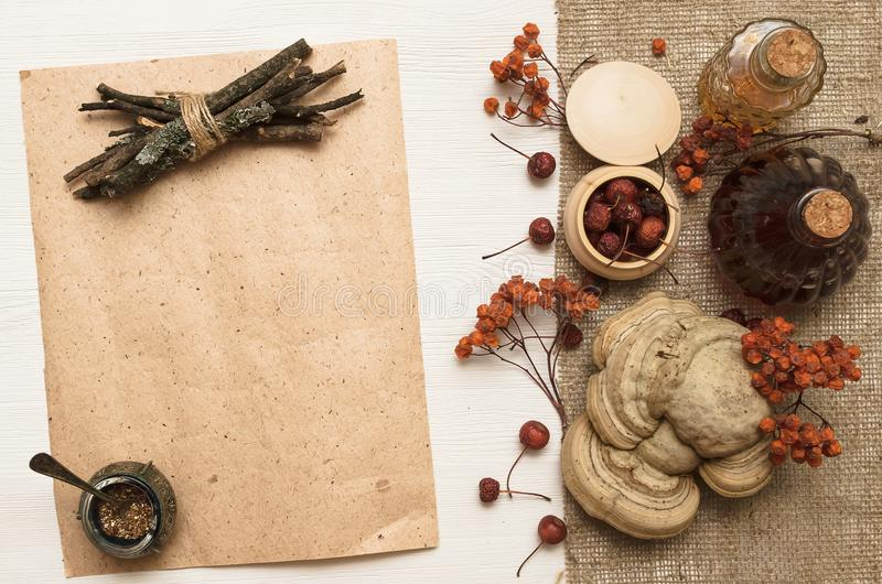 O perforatum erval de Medicine A receita Conceito da medicina alternativa Ingridients naturais orgânicos da baga seca fotografia de stock