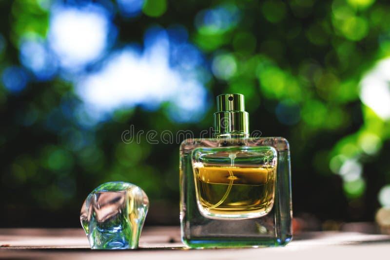 O perfume natural em uma garrafa quadrada no verde borrou o fundo fotografia de stock royalty free
