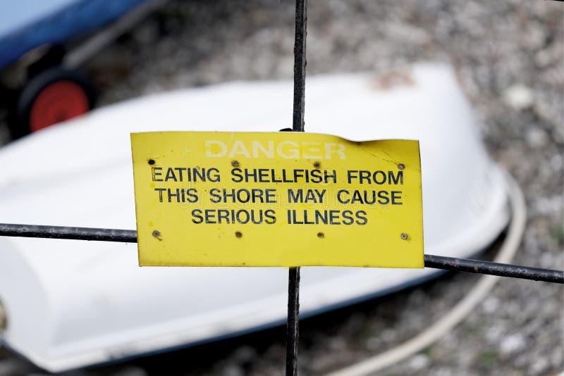 O perigo que come o marisco pode causar o sinal de aviso da doença séria na praia fotografia de stock