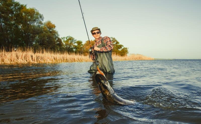 O pescador está mantendo um pique dos peixes travado em um gancho dentro fotografia de stock