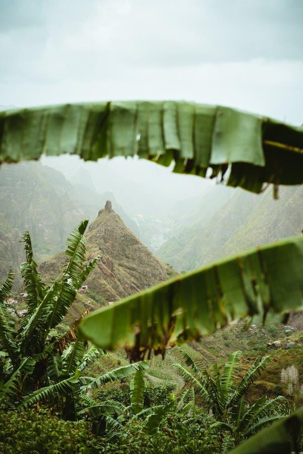 O pico de montanha do vale de Xo-xo visível durante todo a banana sae do quadro abaixo do vale Uma da melhor rota trekking imagem de stock