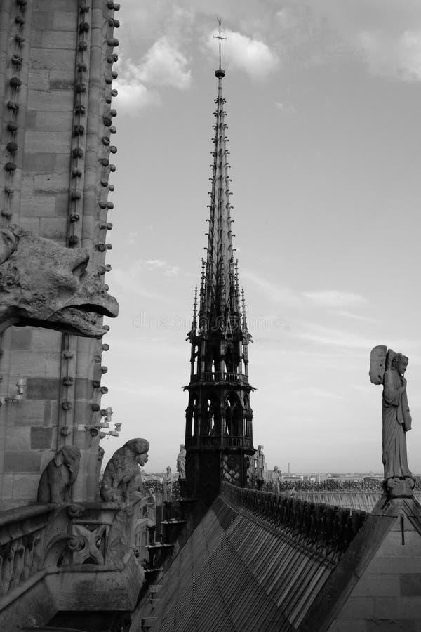O pináculo de Notre-Dame fotos de stock royalty free