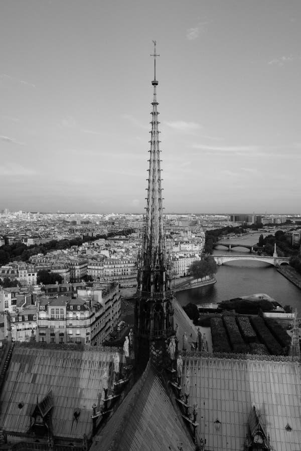 O pináculo de Notre-Dame fotos de stock